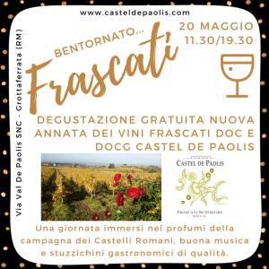 frascati-doc-e-docg-2017-castel-de-paolis